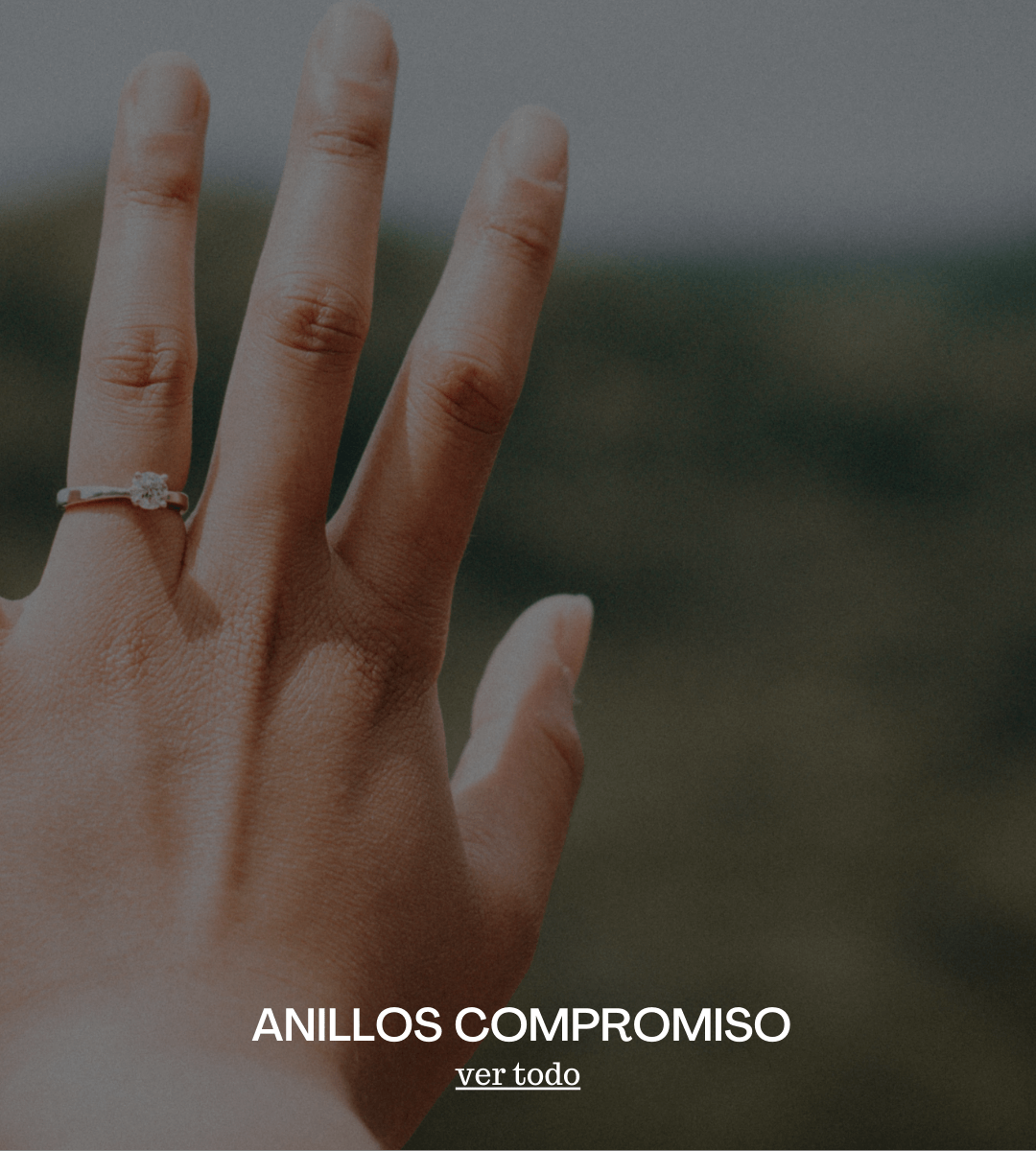 anillos-compromiso-general